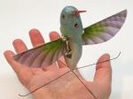 Image of the Nano Hummingbird