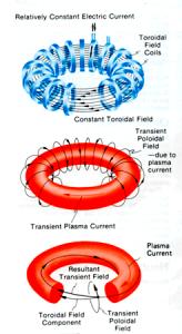 diagram of a Tokamak
